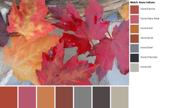DSC_0004-palette