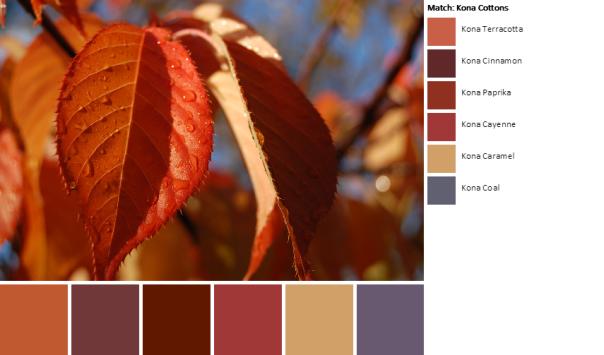 DSC_0403-palette