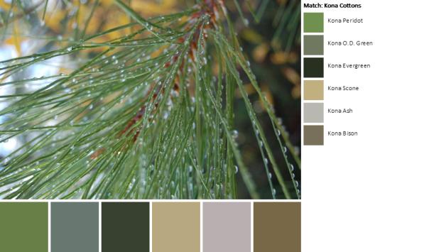 DSC_0408-palette